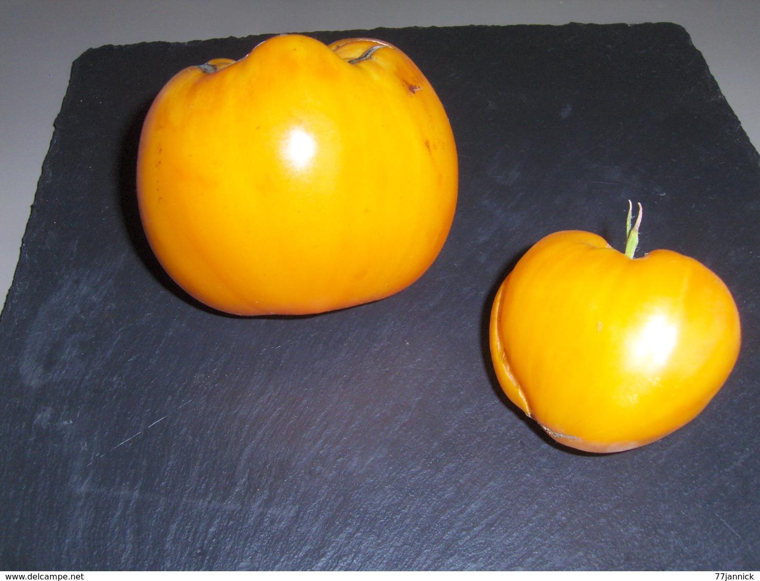 20 Graines De Tomate COEUR DE BOEUF ORANGE( BIO) - 2. Semi