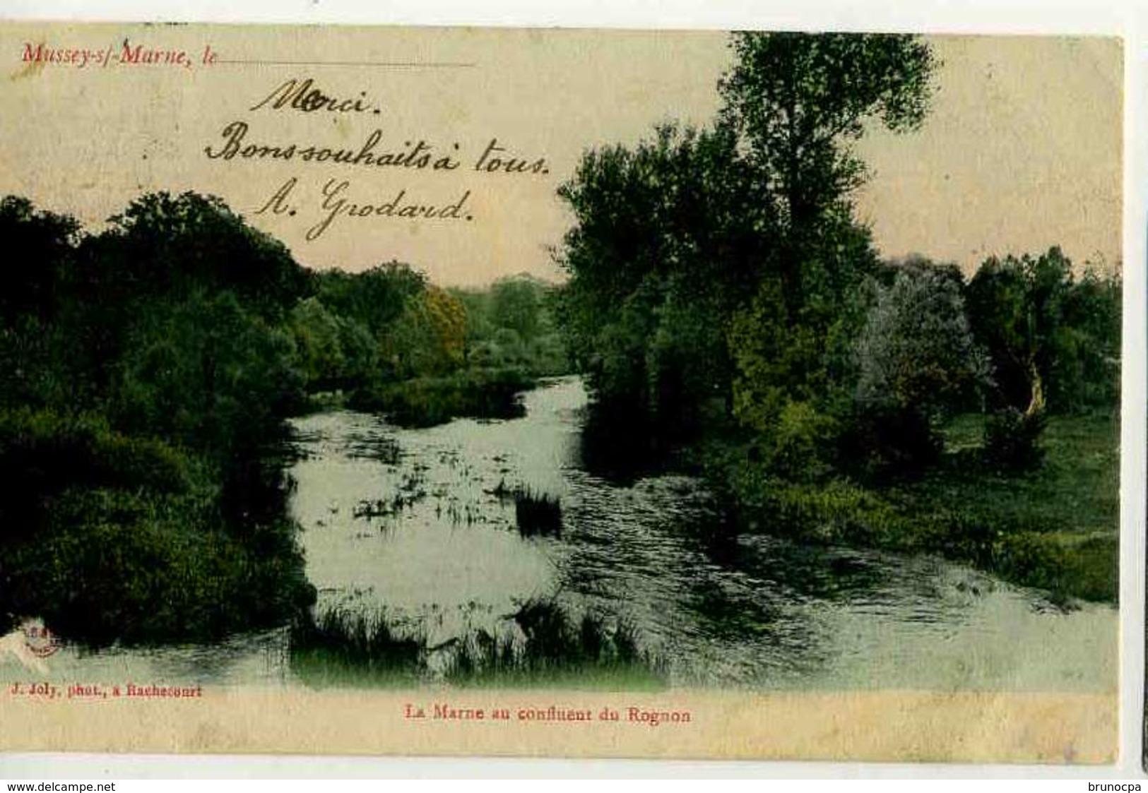 MUSSEY SUR MARNE , La Marne Au Confluent Du Rognon, Colorisée - France
