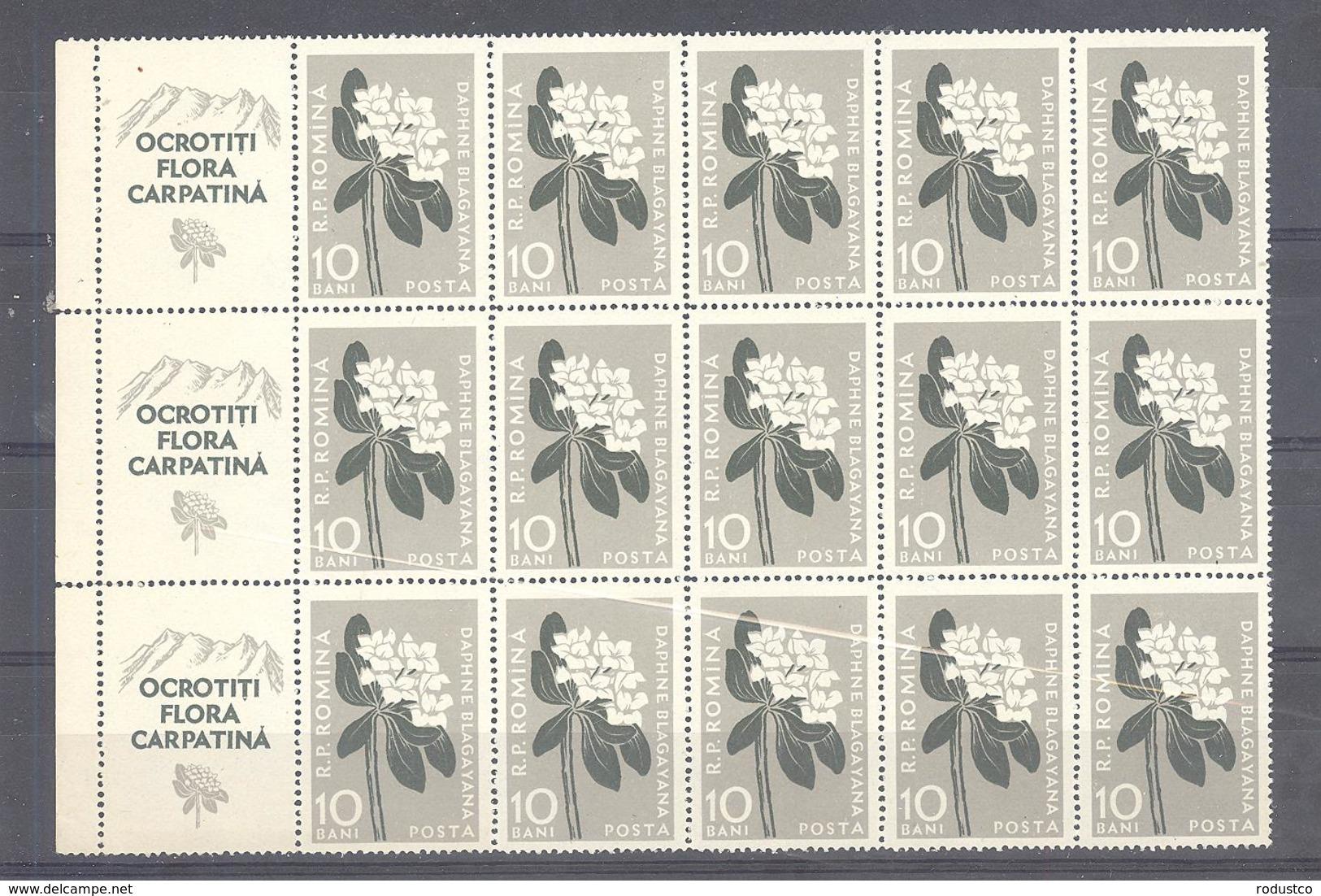 Romania / Rumanien  Michel # 1648  **  15-er Block Mit 3 Zierfelder - Unused Stamps