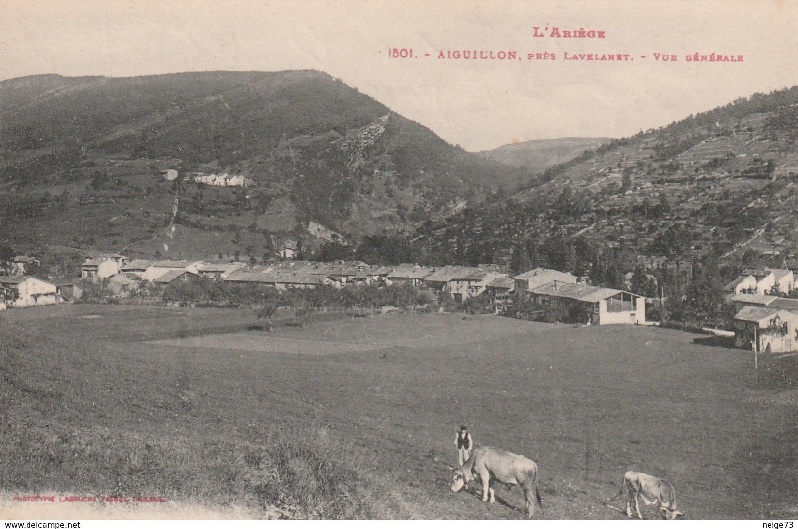 Carte Postale Ancienne De L'Ariège - L'Ariège - Aiguillon, Près Lavelanet - Vue Générale - Andere Gemeenten