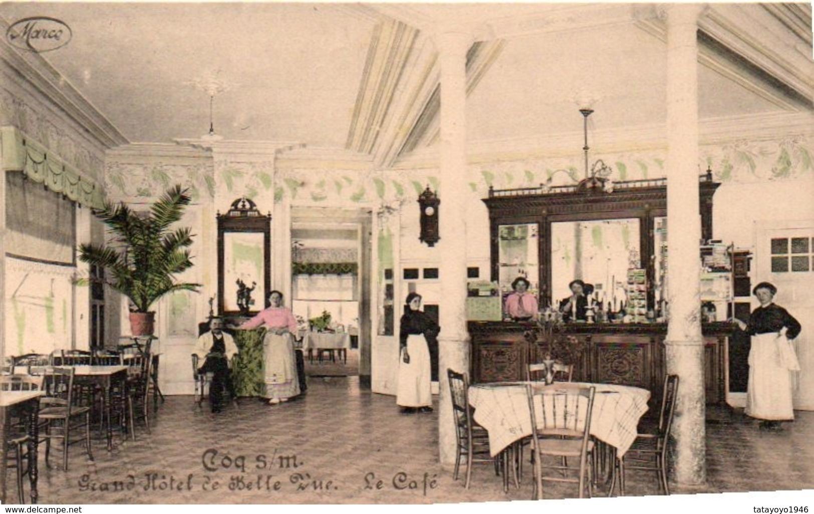 Coq S/mer  Rare Grand Hotel De Belle Vue   Le Café Colorisé Et Animée N'a Pas  Circulé - De Haan