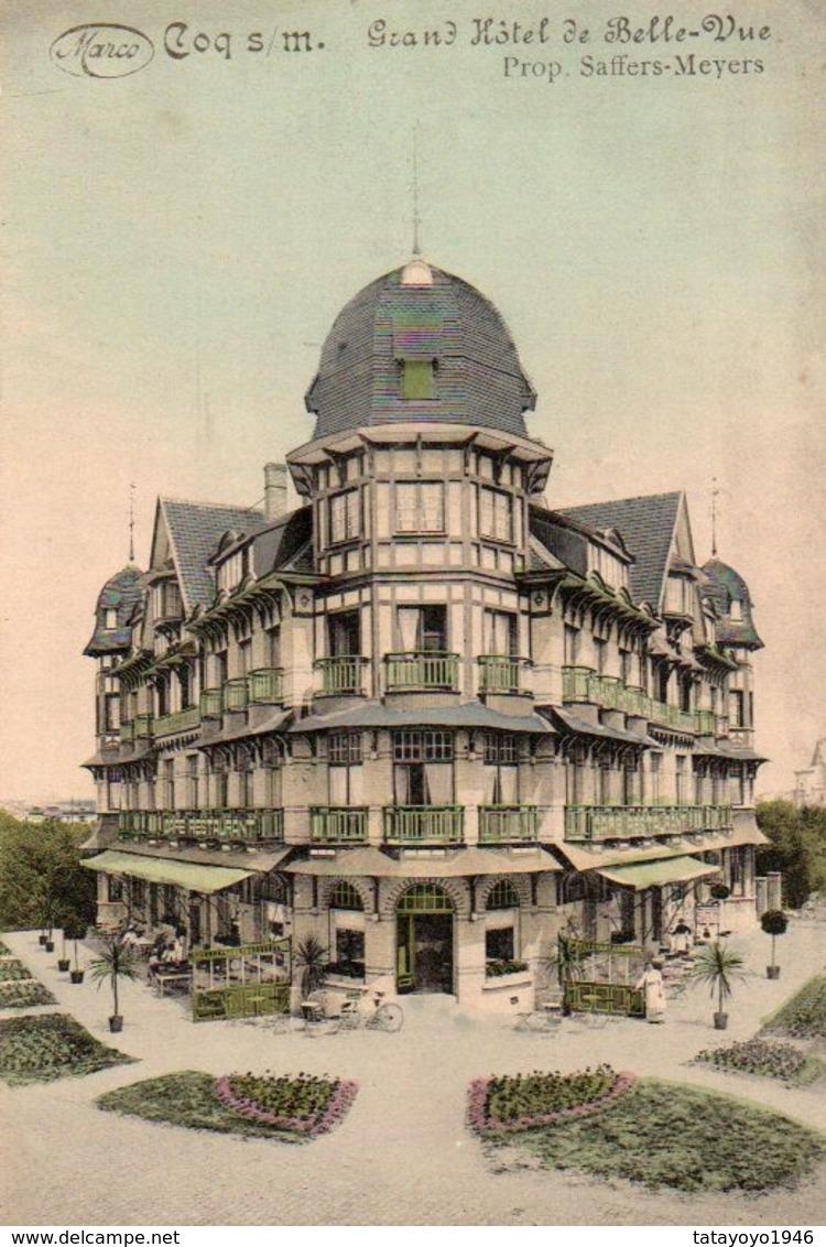 Coq S/mer  Rare Grand Hotel De Belle Vue Colorisé Prop.Saffers-Meyers  N'a Pas  Circulé - De Haan