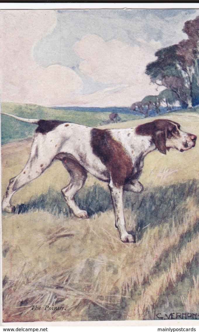 AS91 Animals - Dog - The Pointer, Artist Signed G. Vernon Stokes - Dogs