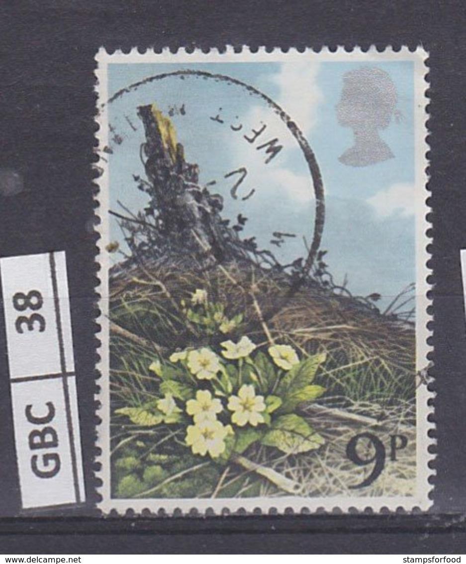 GRANBRETAGNA     1979Fiori Selvatici 9 P Usato - Usati