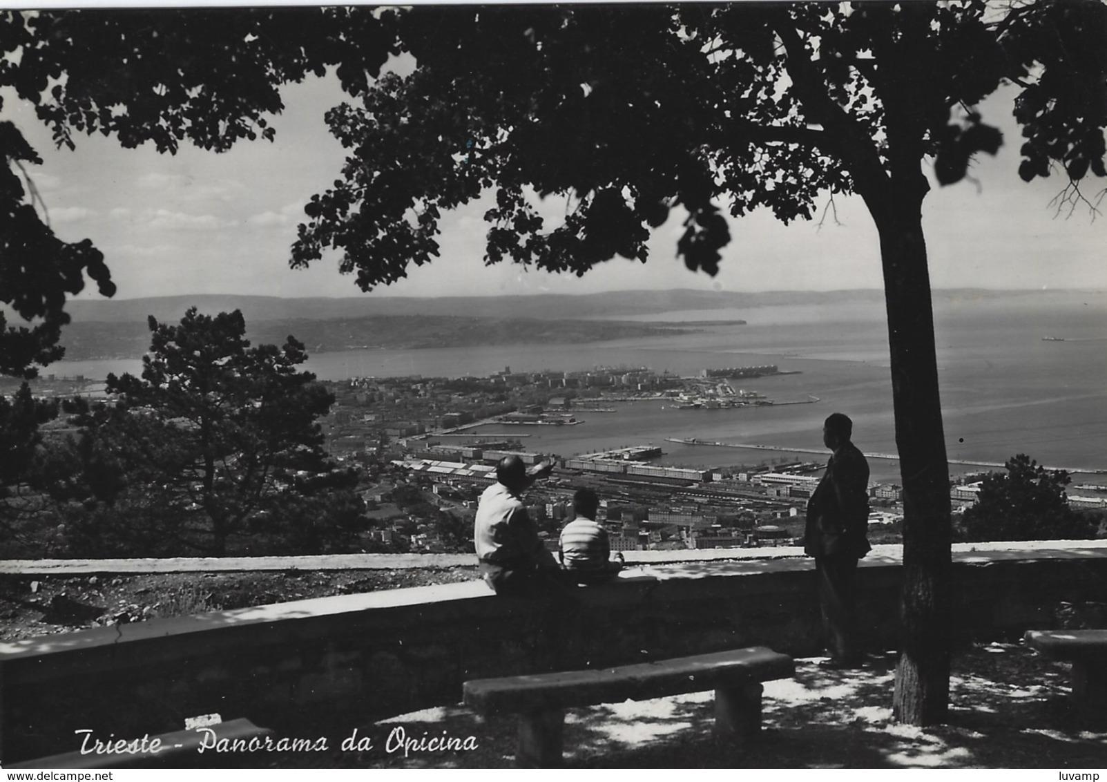 TRIESTE OPICINA -F/G  B/N LUCIDA (50919) - Trieste