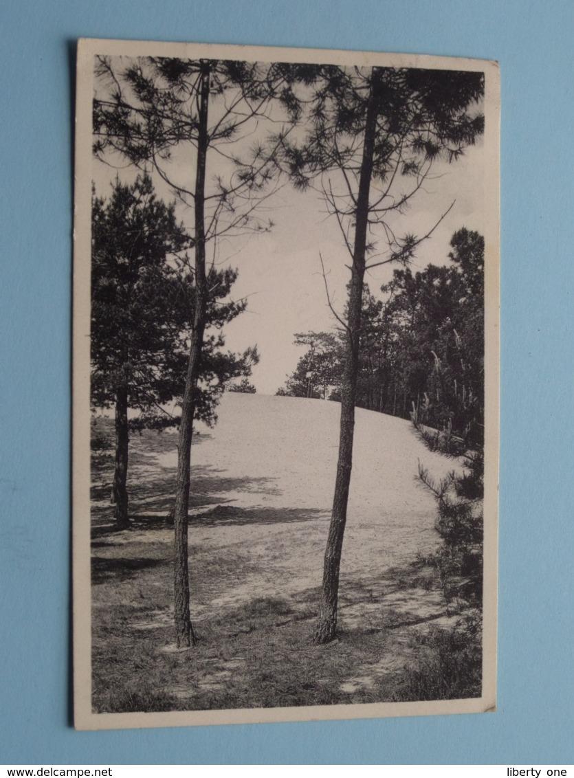 """Kasterlee """" Hoge MOUW """" ( Uitg. E. Beersmans ) Anno 1955 ( Zie/voir Photo ) ! - Kasterlee"""
