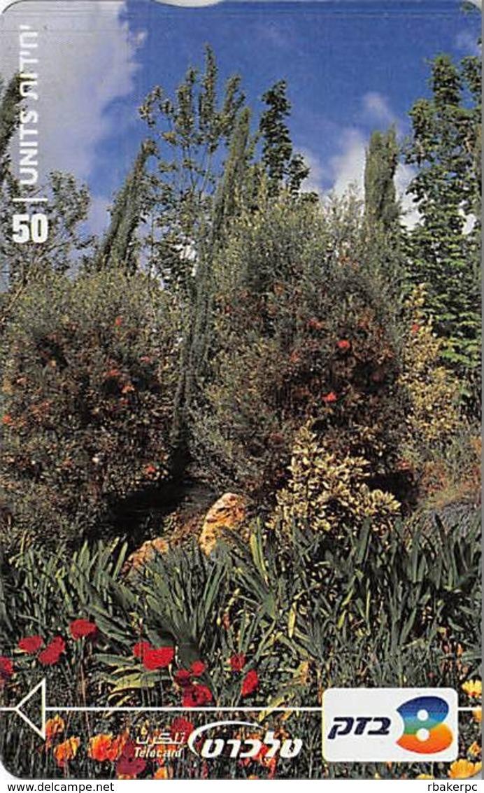 The Botanical Gardens - Landscapes