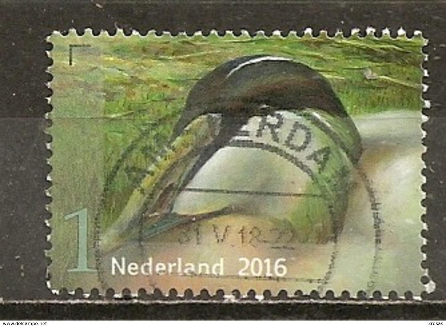 Pays-Bas Netherlands 2016 Oiseau Bird Obl - Periode 2013-... (Willem-Alexander)