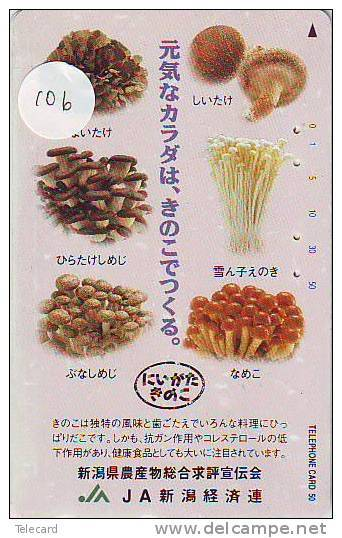 MUSHROOM CHAMPIGNON SETA Fungo Paddestoel (106) - Fleurs