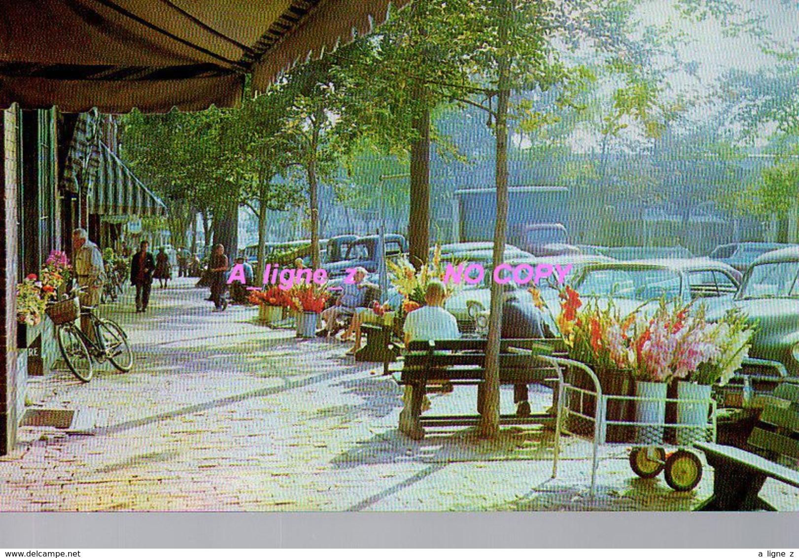 REF 421 : CPSM Etats Unis Nantucket The Flower Market - Nantucket