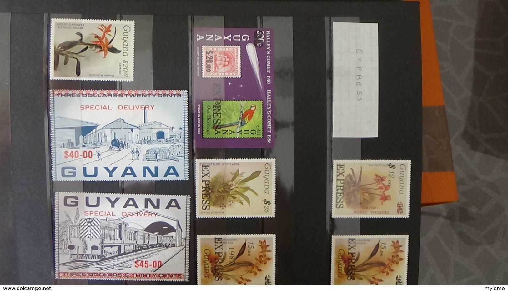 Belle Collection De GUYANE En Timbres Et Fins De Catalogue **. A Saisir !!! - Collections (en Albums)