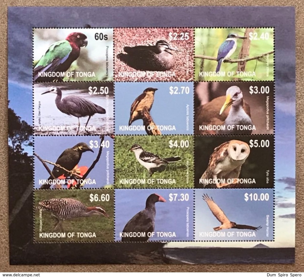Tonga 2012; Fauna & Animals; Birds; Scarce Sheet!! MNH** VF; CV 60 Euro!! - Colecciones & Series