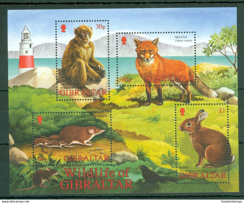 Gibraltar: 2002   Wildlife  M/S   MNH - Gibilterra