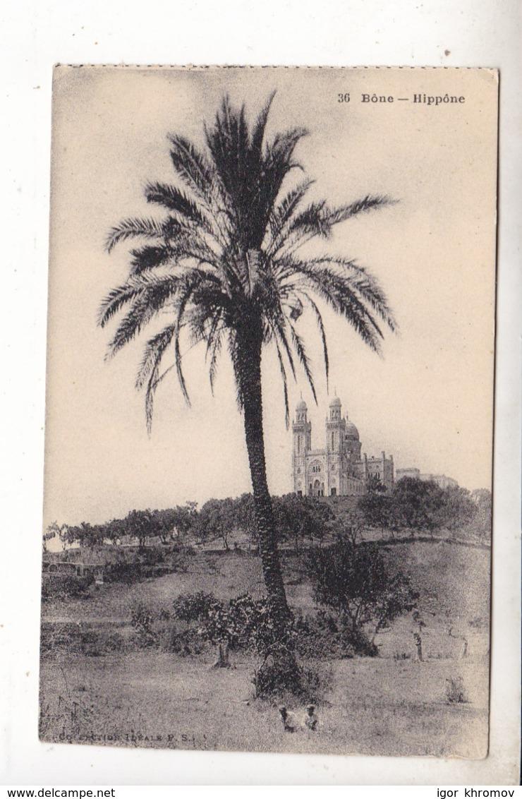(28) Bone Hippone - Algeria