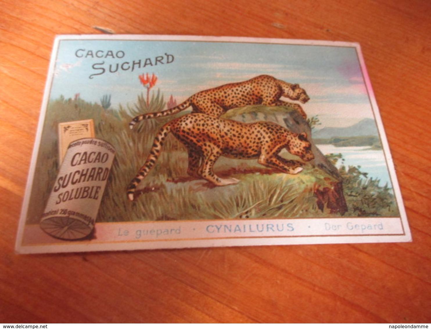 Chromo , Chocolat Suchard - Suchard