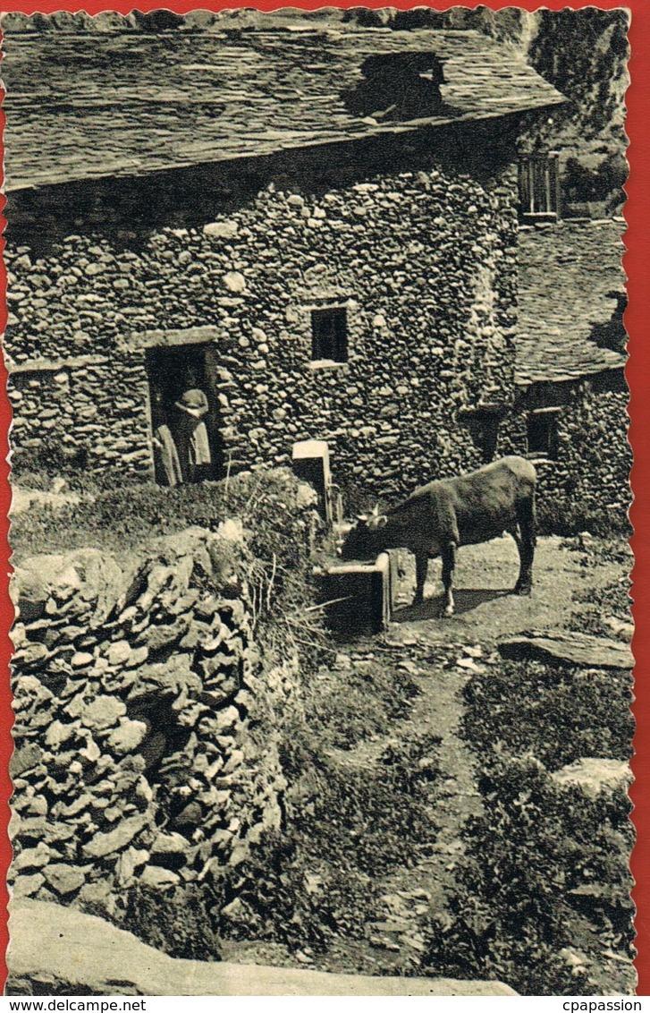 Andorre - Andorra- Abeurador A Canillo- Cpsm -écrite Au Verso Sans Timbre-  Paypal Sans Frais - Andorre
