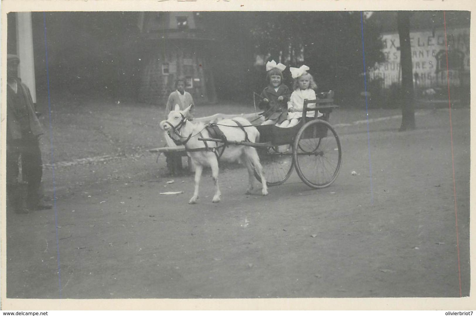 Belgique - Spa - Carte-Photo - En Ballade Dans Le Parc - Attelage Pour Enfants - Spa