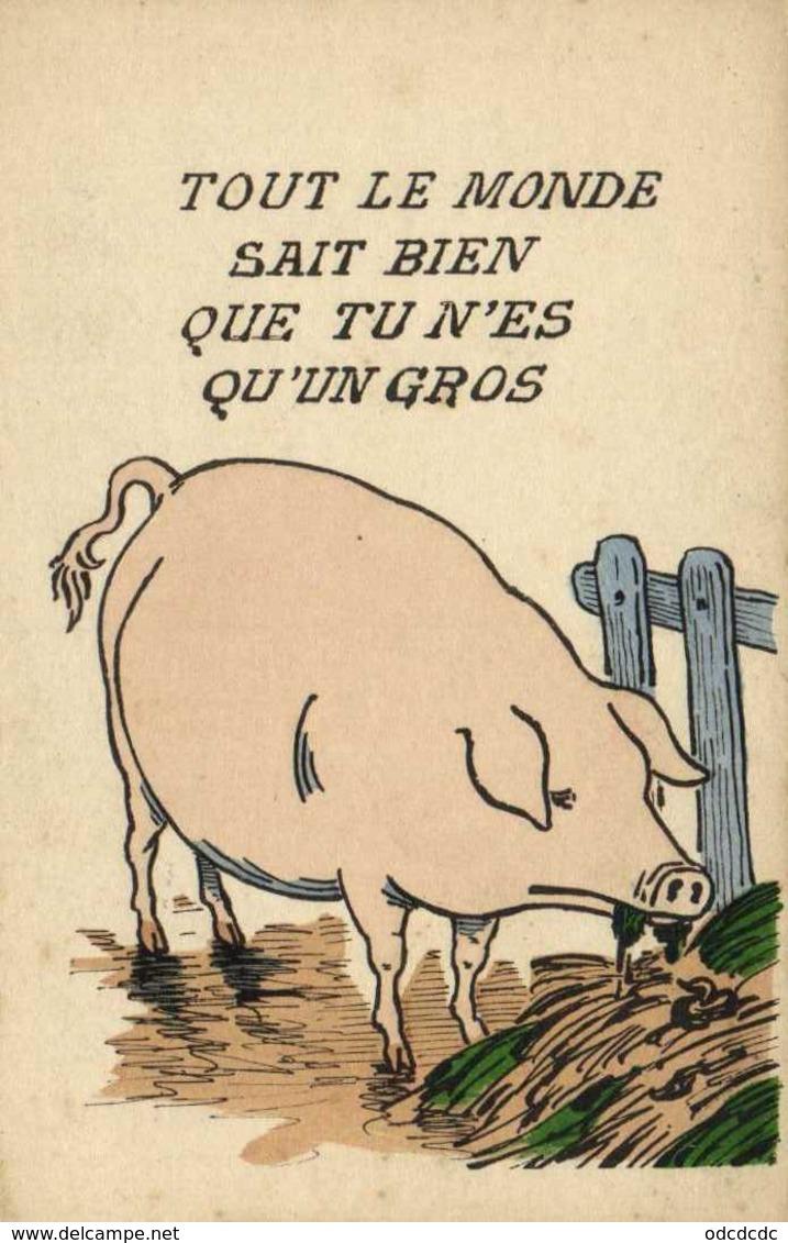 Illustrateur TOUT LE MONDE SAIT BIEN QUE TU N'ES  QU'UN GROS  (COCHON) RV - Humor