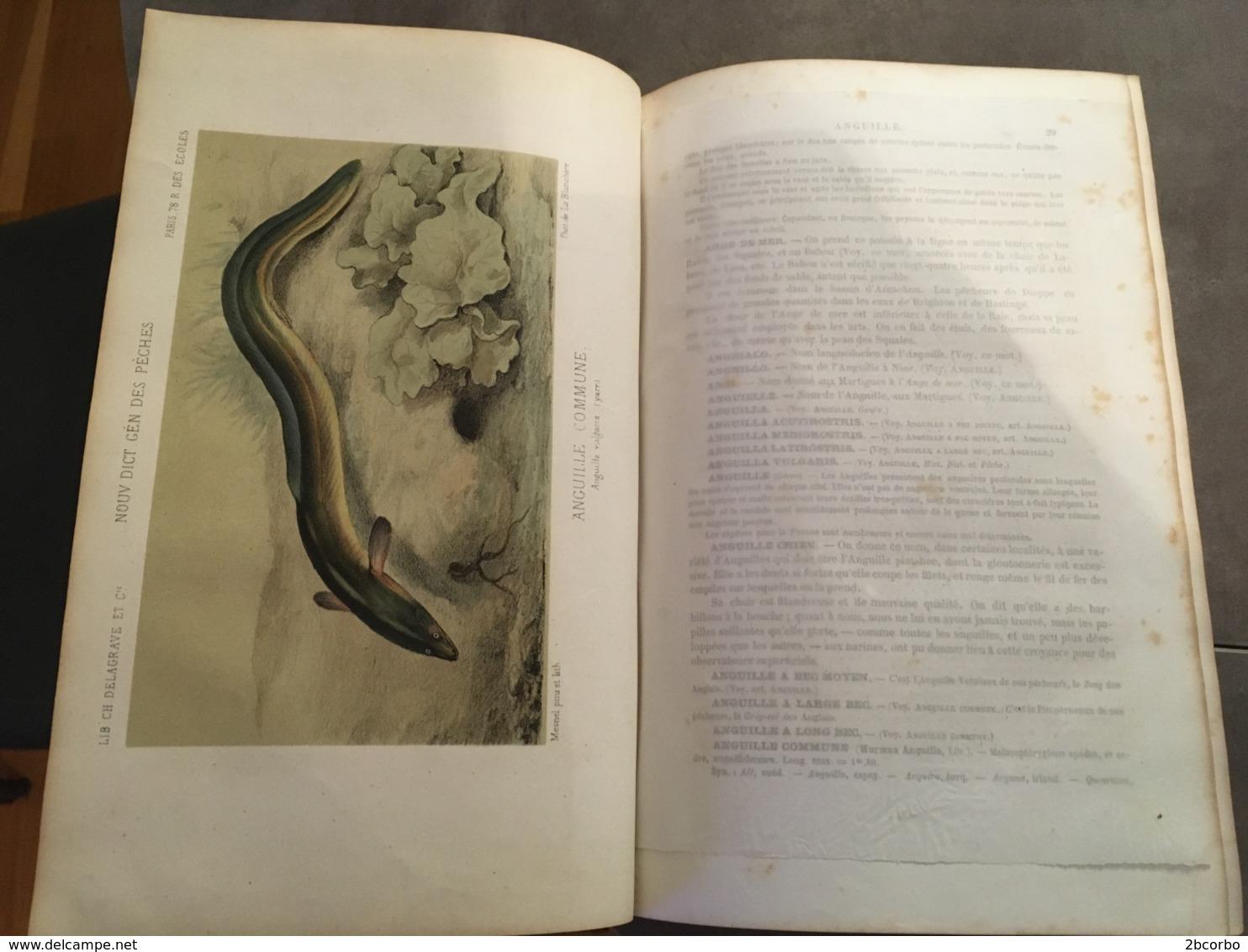 LA PECHE ET LES POISSONS H DE LA BLACHERE DICTIONNAIRE DES PECHES EDITION ORIGINALE DE 1868 - 1801-1900
