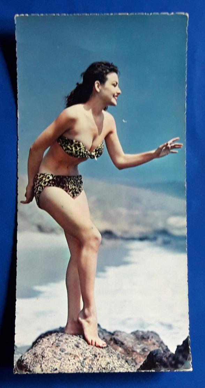 "Rare Vintage PIN-UP Post Card ""Sexy Bikini Girl"" Jeune Femme >SONDERFORMAT< Young Woman # Alte Foto-AK # [19-1192] - Pin-Ups"