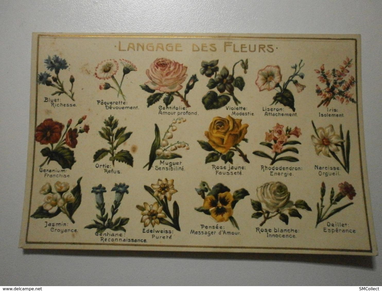 Langage Des Fleurs (A6p48) - Fleurs