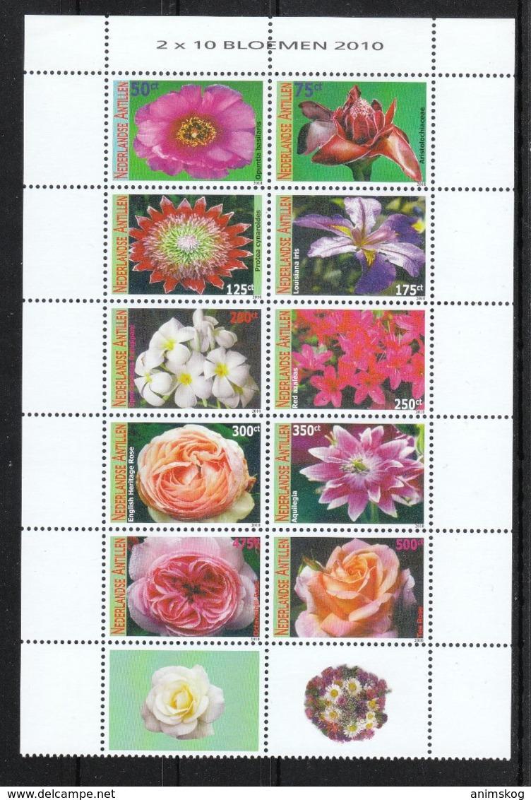 NL Antillen 2010**, Blumen, Kaktus, Sukkulente / Dutch Antilles 2010, MNH, FLowers, Cactus, Succulent - Sukkulenten