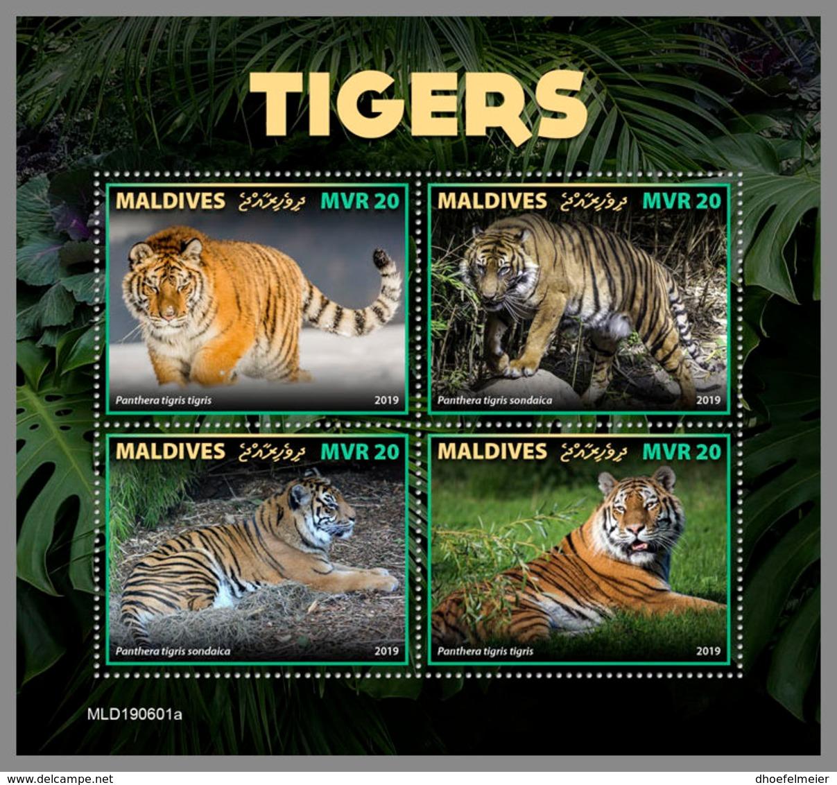 MALDIVES 2019 MNH Tigers Tiger Raubkatzen Tigres M/S - OFFICIAL ISSUE - DH1937 - Big Cats (cats Of Prey)