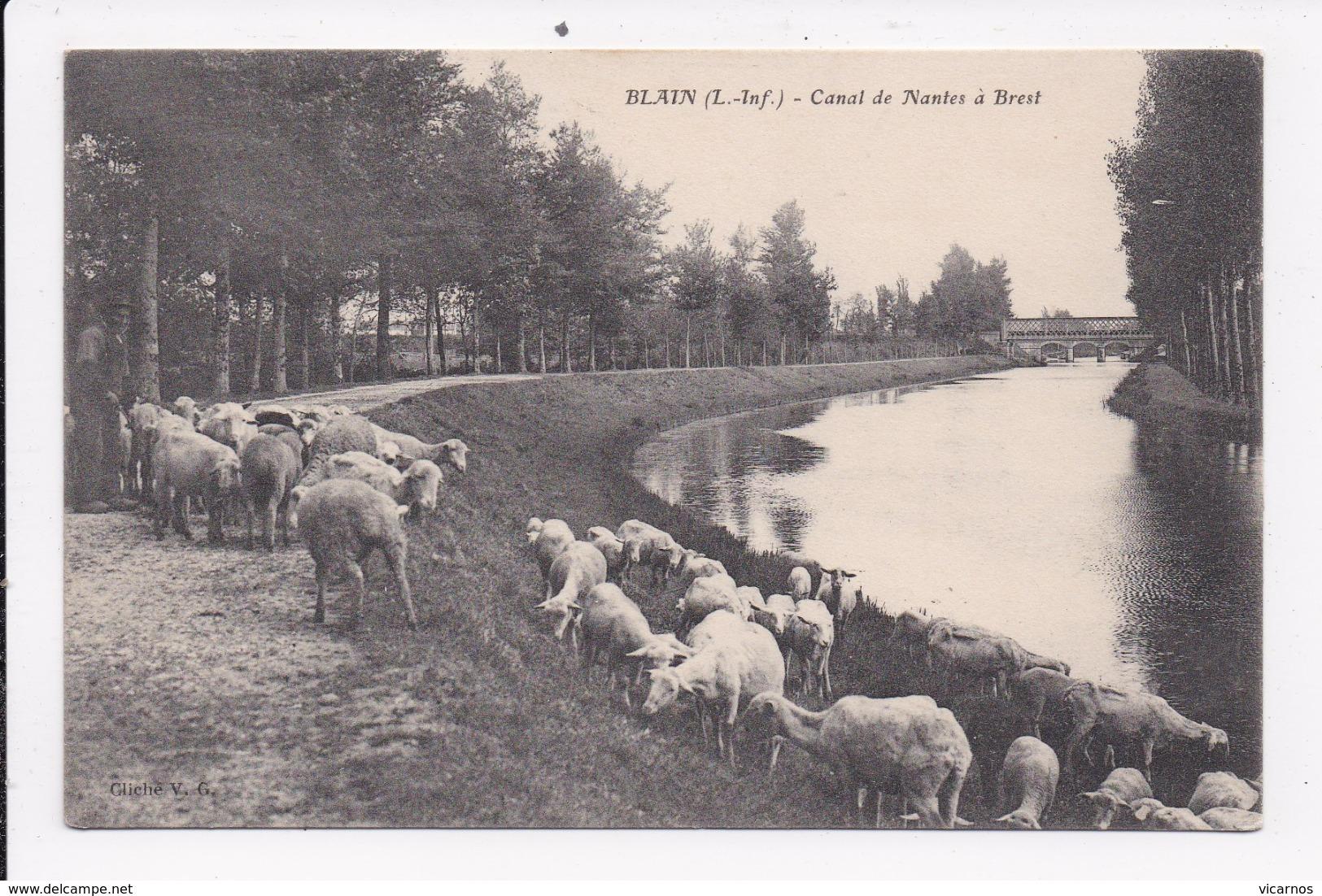 CP 44 BLAIN Canal De Nantes à Brest   ( Moutons) - Blain