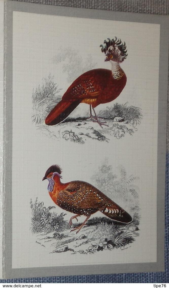 Petit Calendrier De Poche 1987 Illustration Oiseau - Calendars