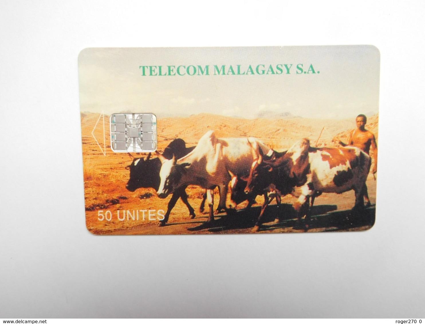 Télécarte Magagascar , Malagasy , Zébu , Bœuf - Madagaskar