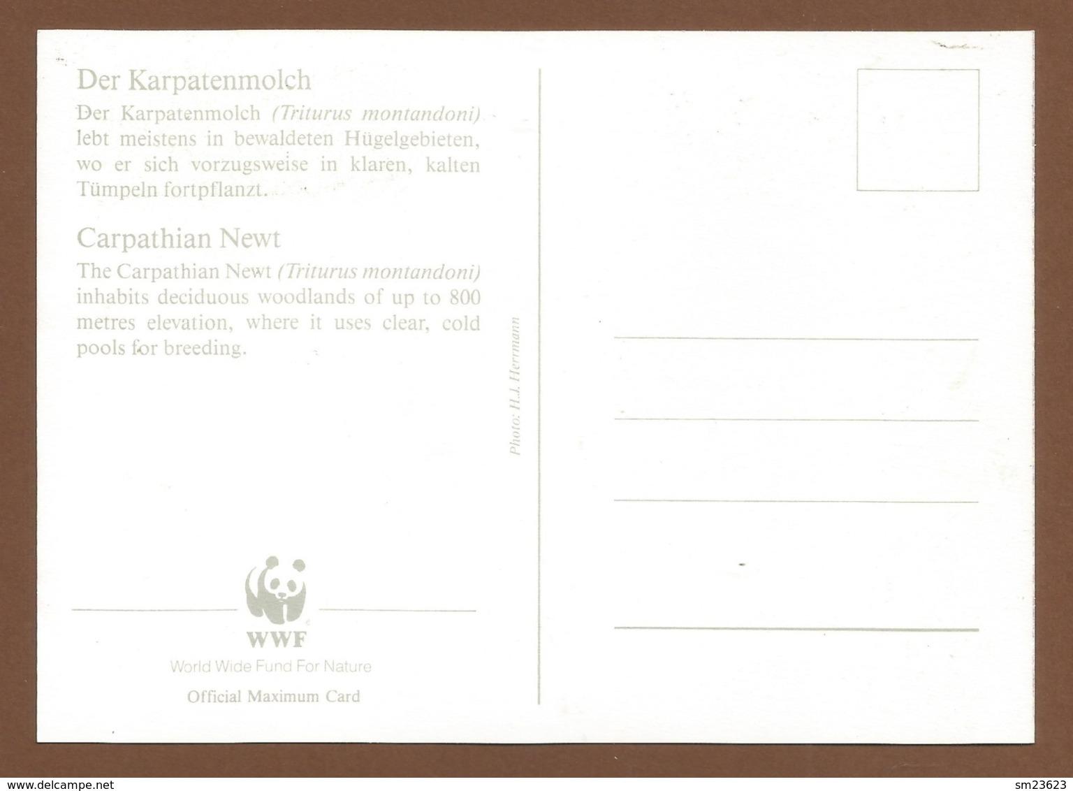 Ceskoslovensko  1989 , Carpathian Newt  ( Karpatenmolch) - WWF Official Maximum Card First Day  - PRAHA 18-7-1989 - Tschechoslowakei/CSSR