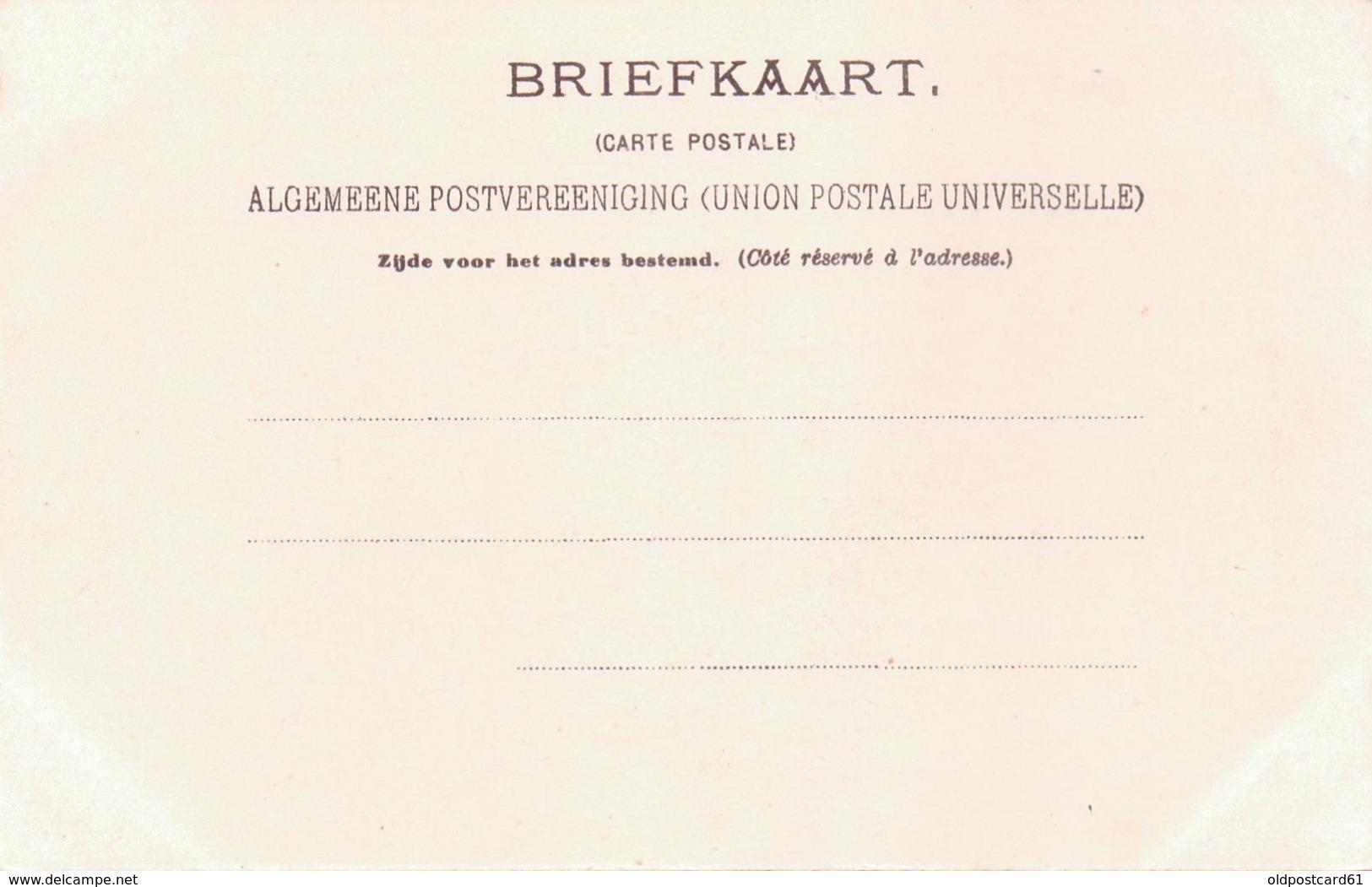Seltene ALTE  AK  ST. HELENA  - Teilansicht - Ca. 1900 Gedruckt - St. Helena