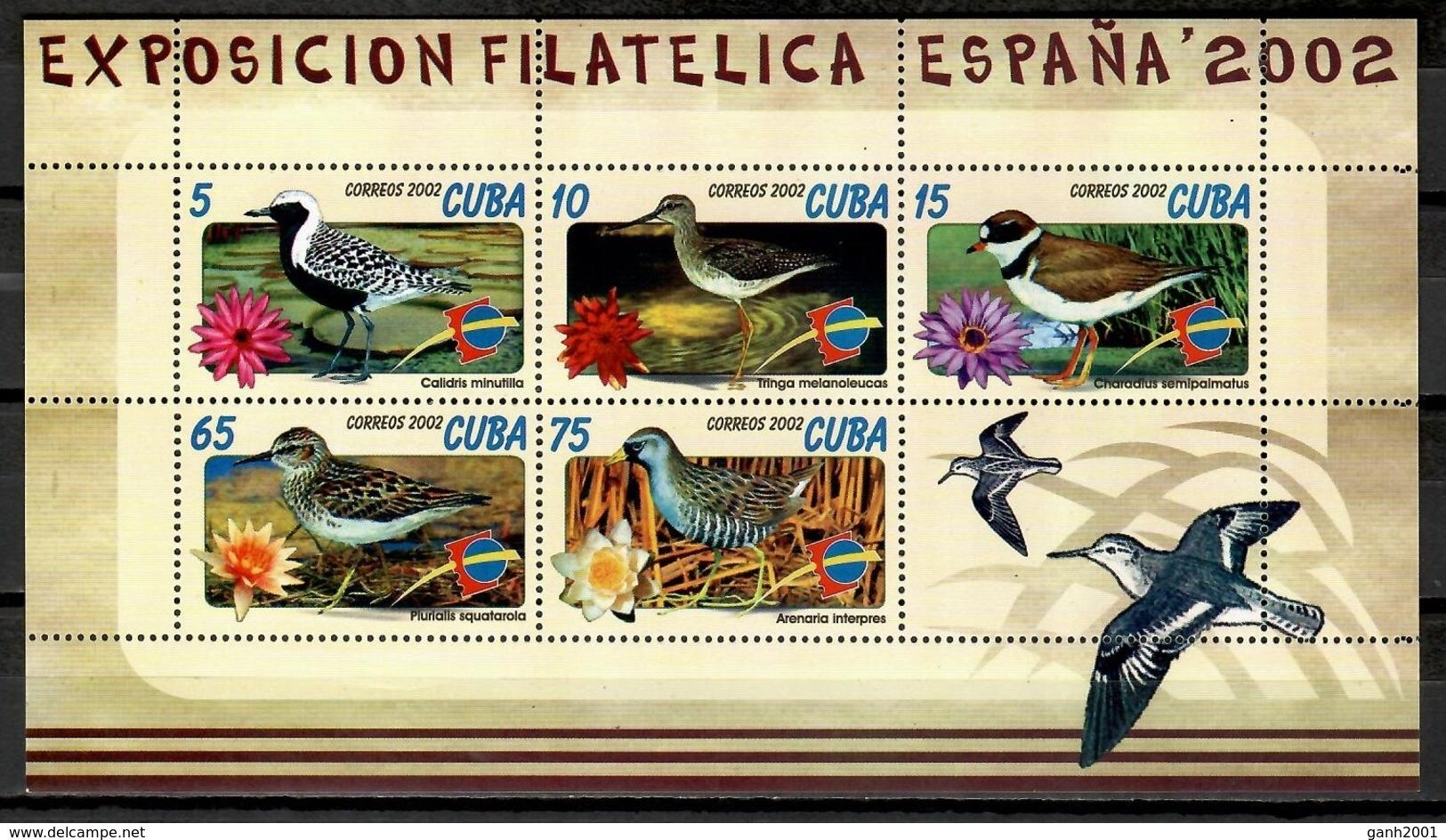 Cuba 2002 / Birds MNH Vögel Aves Oiseaux  / Cu11113  18-35 - Sin Clasificación