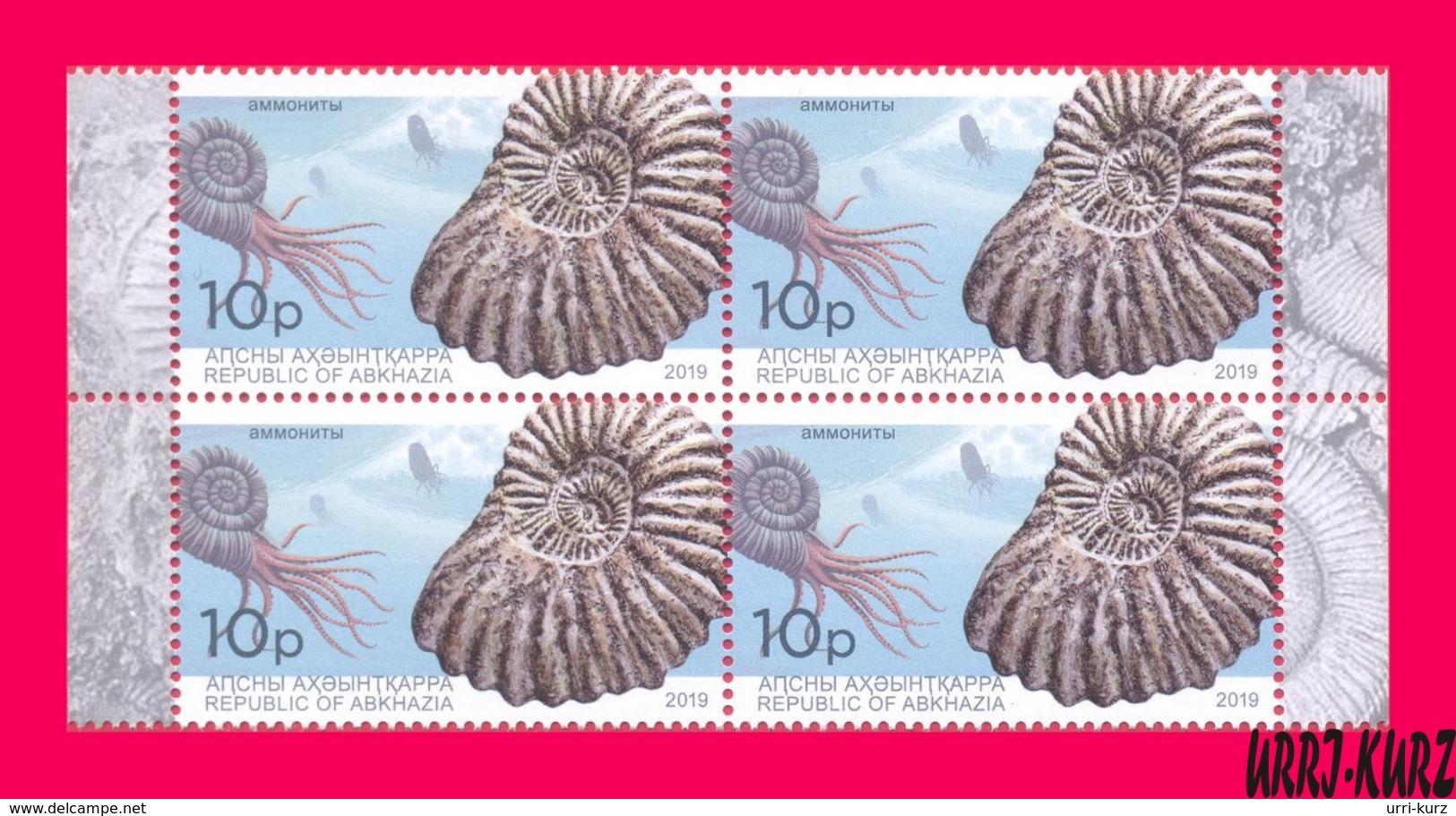 ABKHAZIA 2019 Fauna Marine Shell Fossils Extinct Cephalopods Ammonites Archaeology Block Of 4v MNH - Marine Life