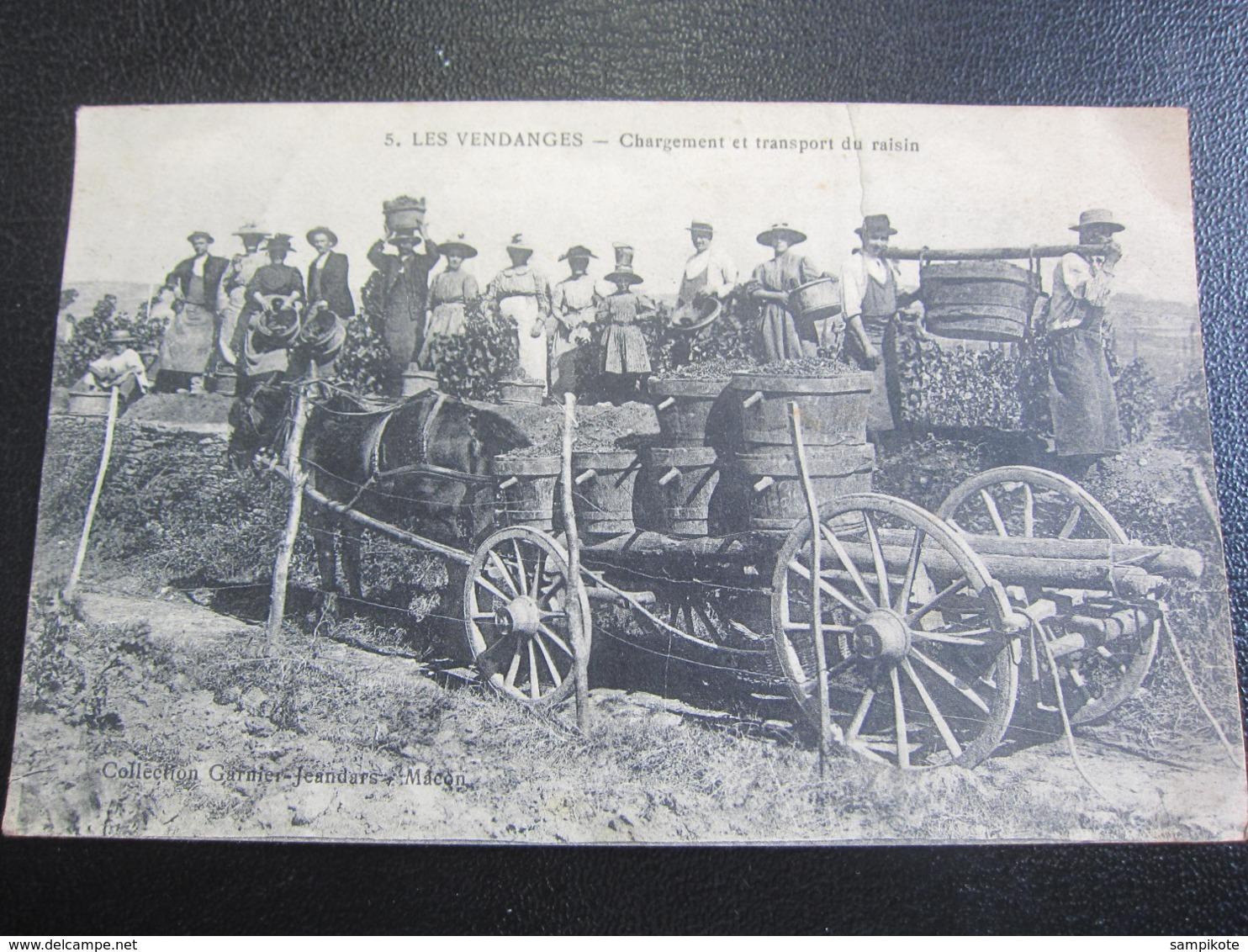 Les Vendanges - Chargement Et Transport Du Raisin - Paesani