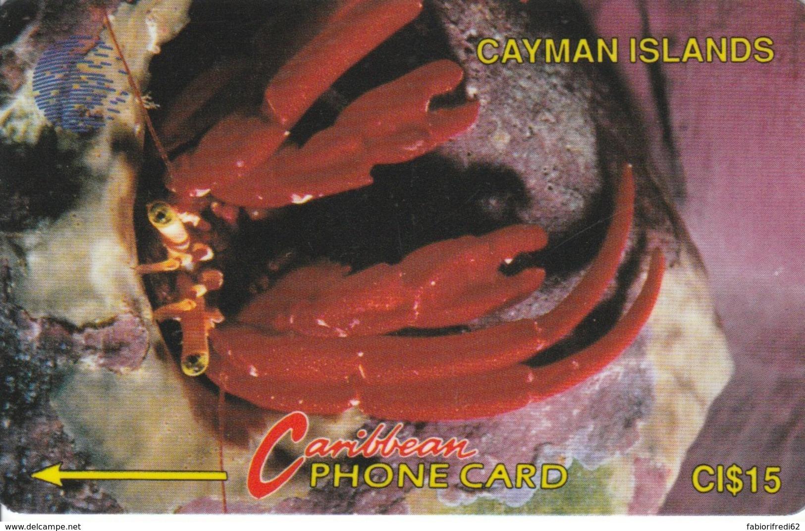PHONE CARDS CAYMAN ISLANDS (E49.3.7 - Isole Caiman