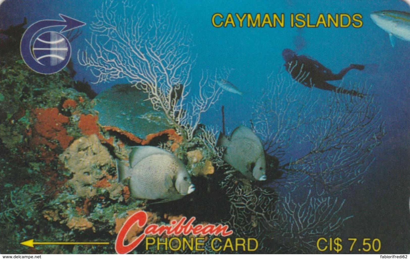 PHONE CARDS CAYMAN ISLANDS (E49.3.4 - Isole Caiman
