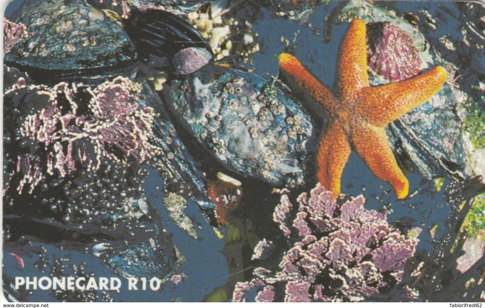 PHONE CARDS SUD AFRICA (E49.37.8 - Sudafrica
