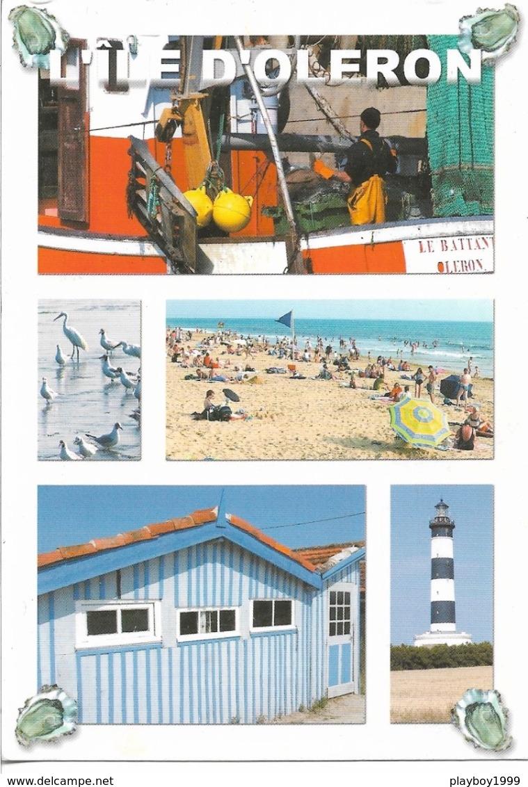 17 - Charente-Maritime - L'ILE D'OLÉRON - 4 Coquillages Autour De La Photo - Multi-Vues - 5 Vues - Cpm - écrite - - Pescados Y Crustáceos