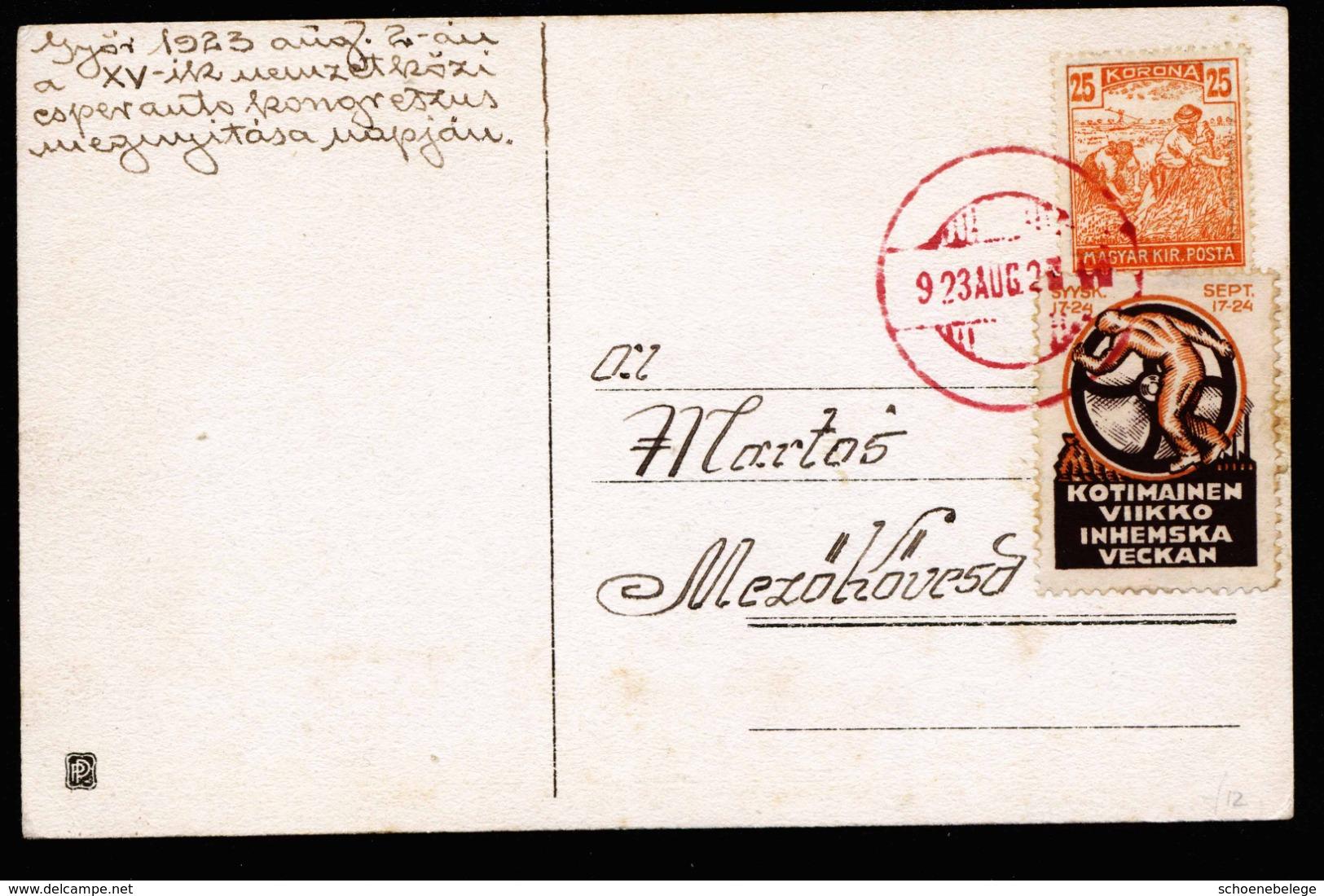 A6327) Ungarn Hungary Handcolorierte Sonderkarte ESPERANTO 1923 Nuernberg Congress - Ungarn