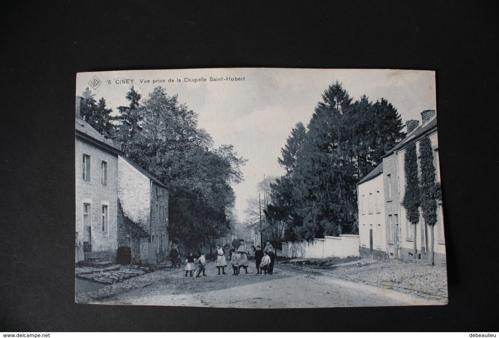 Ciney - Vue Prise De La Chapelle Saint-Hubert - Ciney