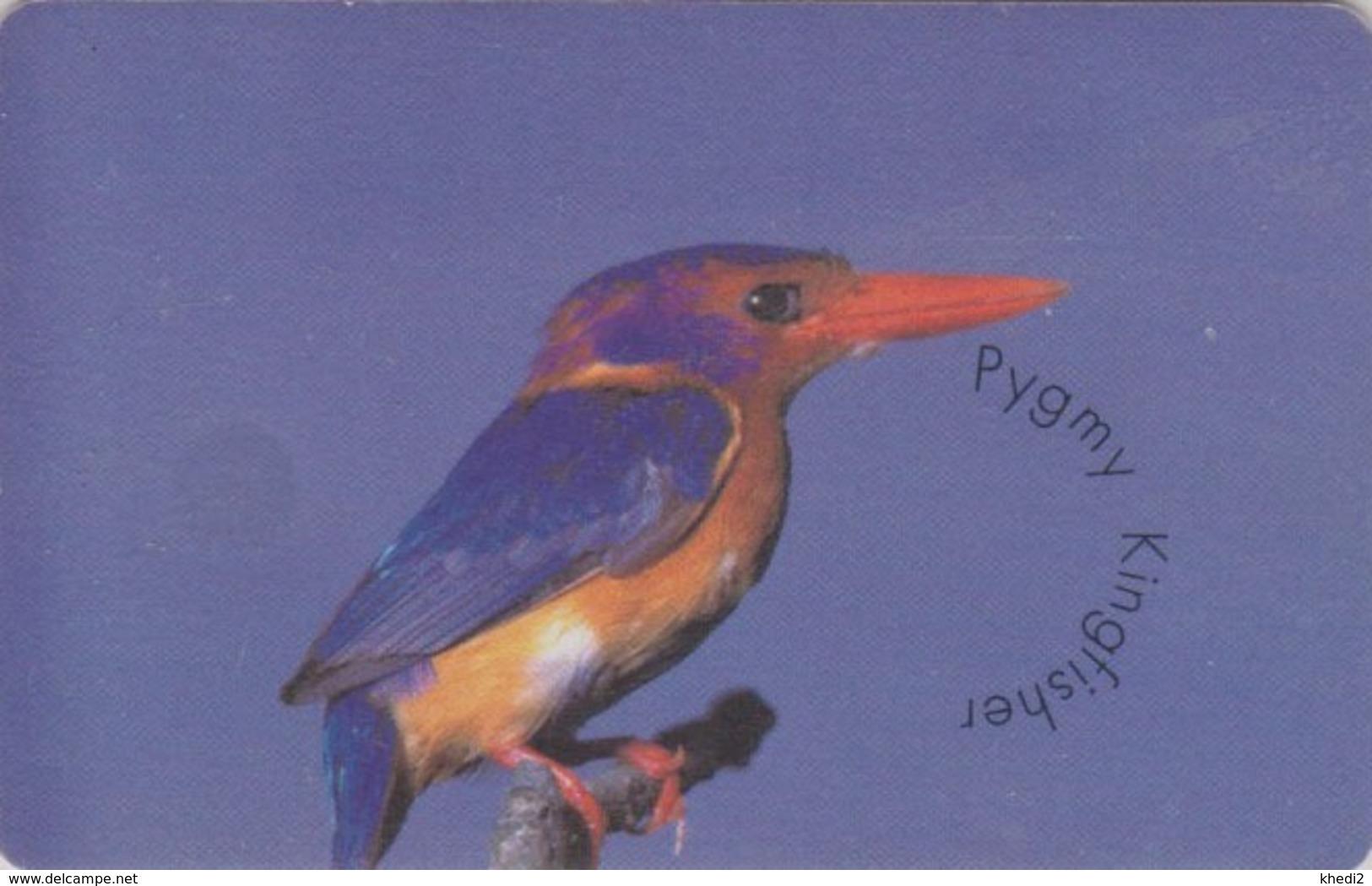 TC PUCE AFRIQUE DU SUD - ANIMAL - OISEAU MARTIN PECHEUR - KINGFISHER BIRD South Africa Chip Phonecard - 4937 - Afrique Du Sud