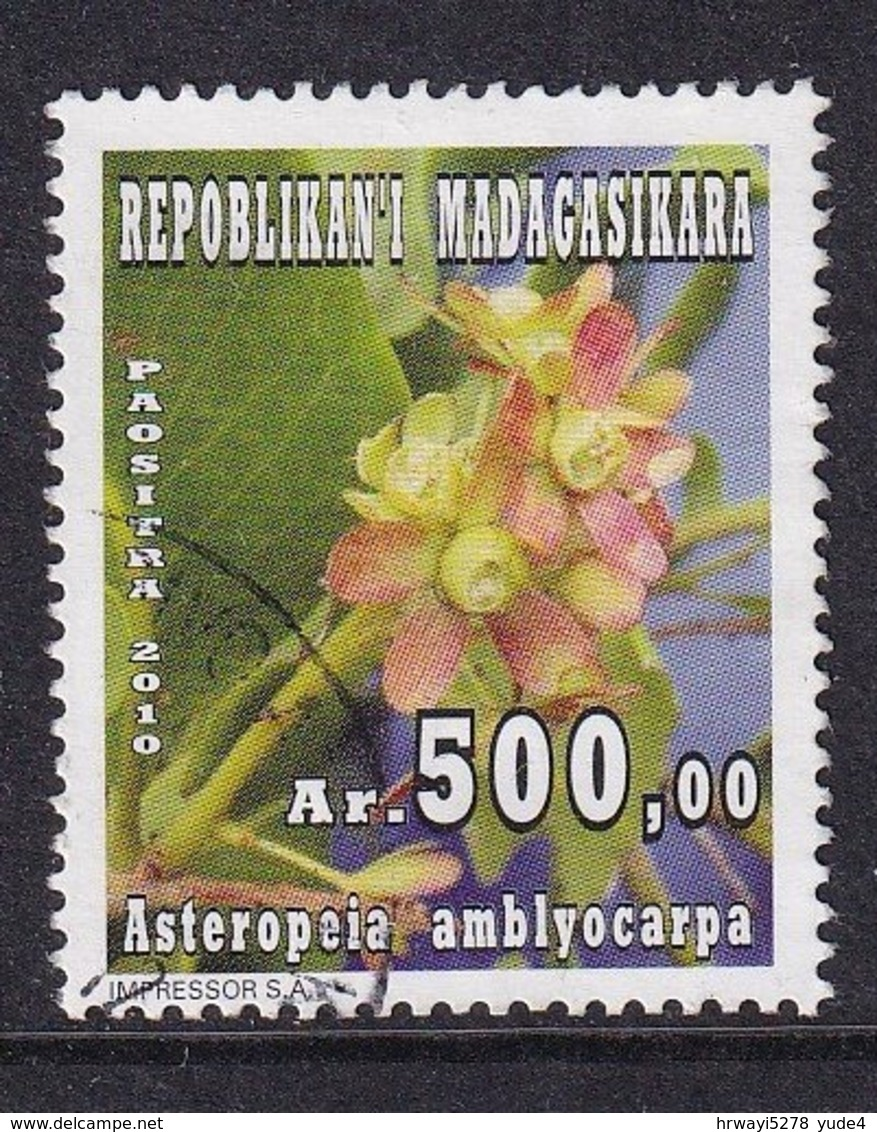 Madagascar 2010, Flower, Vfu - Madagascar (1960-...)