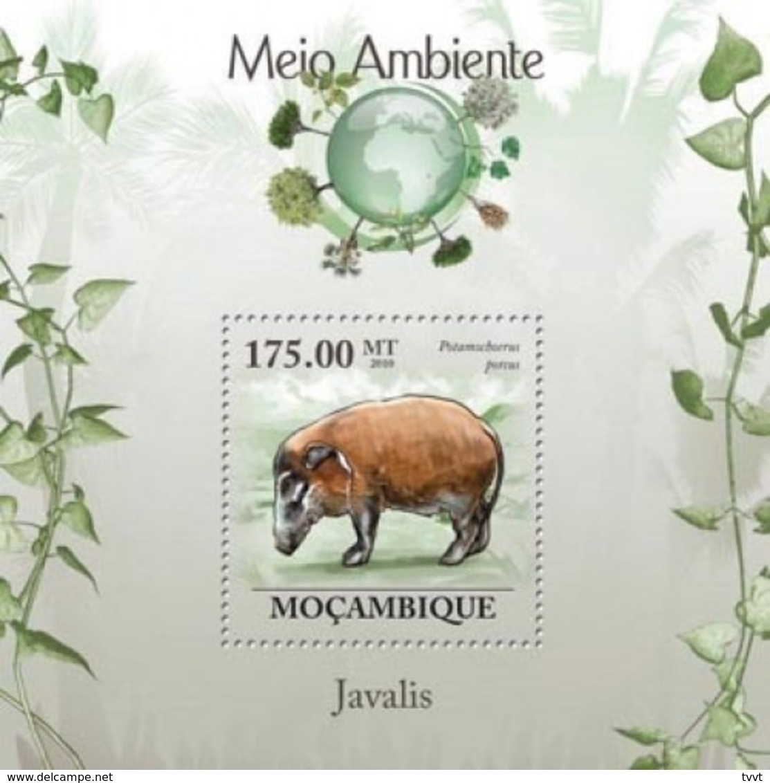 Mozambique, 2010. [moz10123] Boars (Sus Scrofa, Phacochoerus Africanus) (s\s+block) - Briefmarken