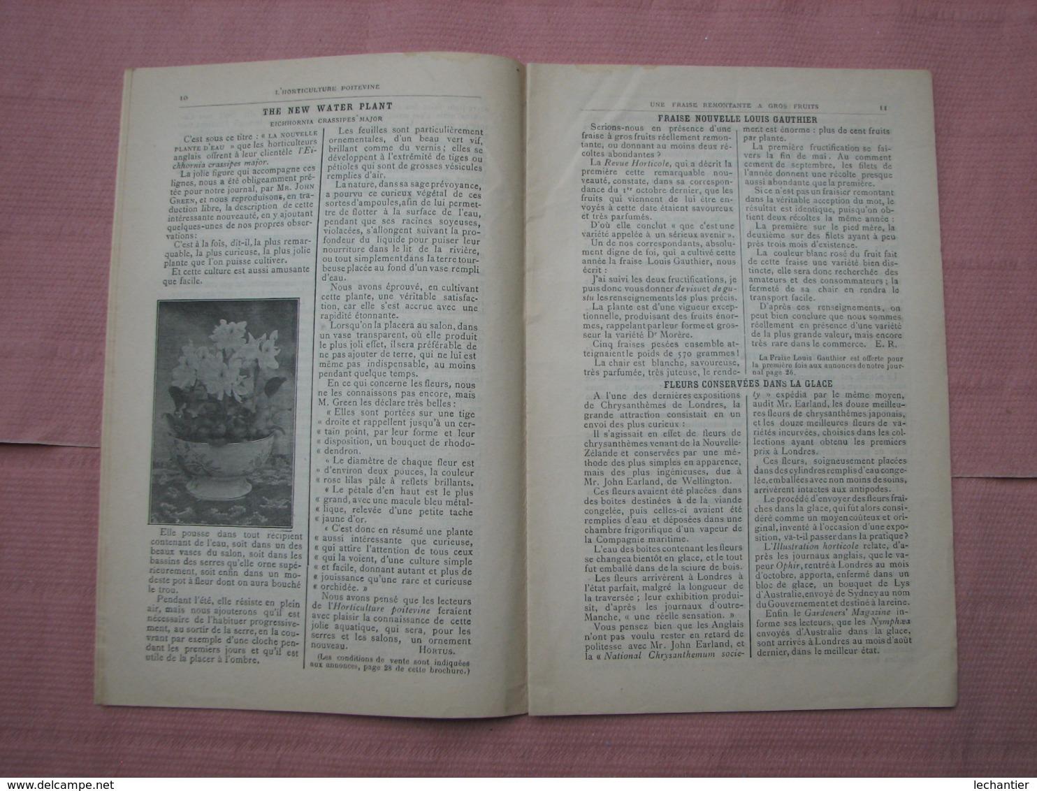 Catalogue 1896 N°229 L'Horticulture Poitevine  Ets. Bruant  Poitiers  TBE - B. Flower Plants & Flowers