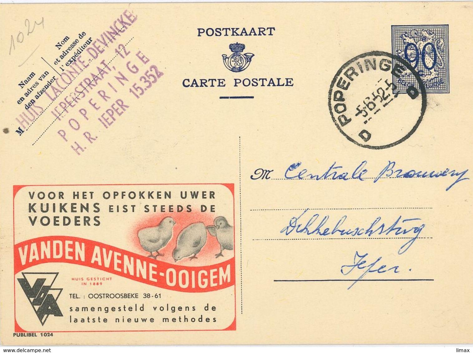 Publibel 1024 Kuikens Küken - Poperinge 1952 - Stamped Stationery