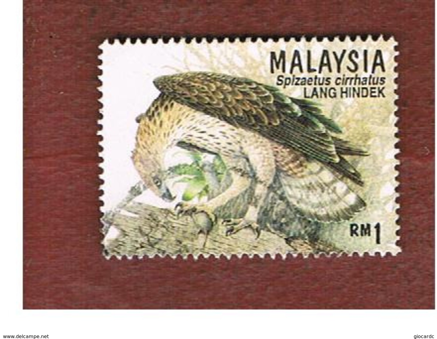 MALESIA (MALAYSIA)  -  SG 606  -   1996 BIRDS OF PREY: CRESTED HAWK EAGLE  -  USED ° - Malesia (1964-...)