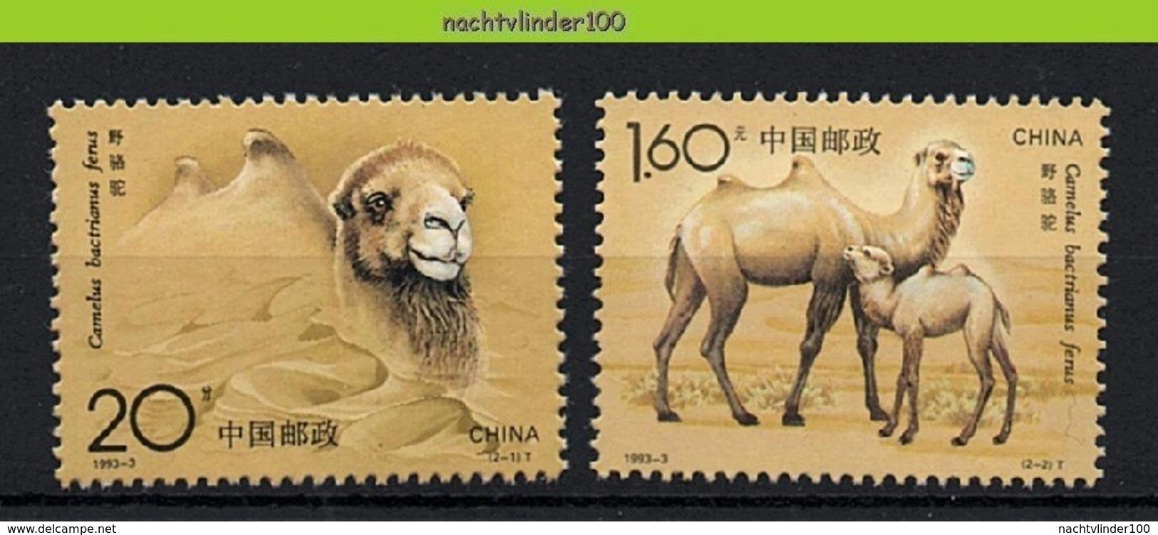 Nff116 FAUNA ZOOGDIEREN BOERDERIJDIEREN KAMEEL CAMEL MAMMALS FARM ANIMALS CHINA 1993 PF/MNH - Farm