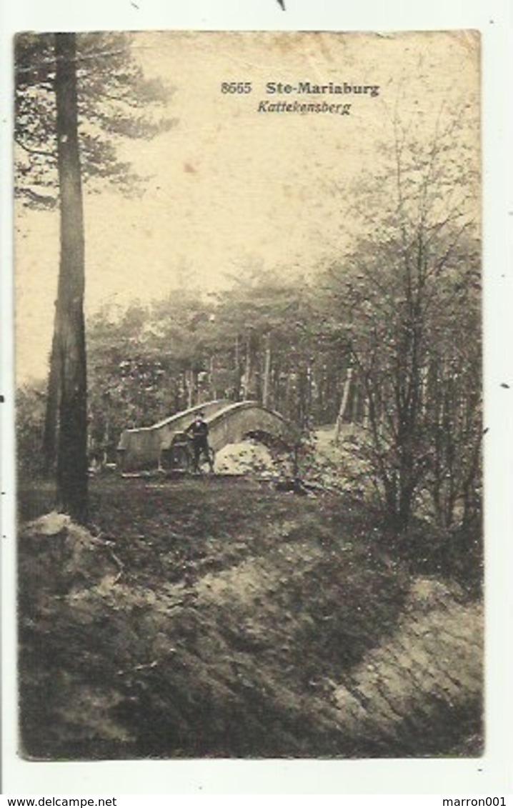Mariaburg - Kattekensberg ( 2 Scans) 1920 - HOELEN - Antwerpen
