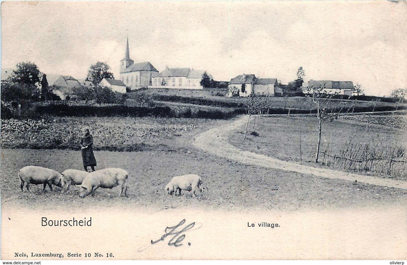 Luxembourg - Bourscheid - Le Village - Les Cochons - Nels Luxembourg Série 10 N° 16 - Cartes Postales